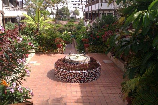 Hacienda Del Sol: Entrada