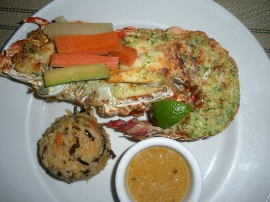 Cocobay Resort: yummmmmmy spiney lobster. could barely eat it all there was so much!