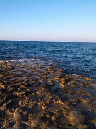 Agriturismo Torre Santo Stefano: spiaggia rocciosa