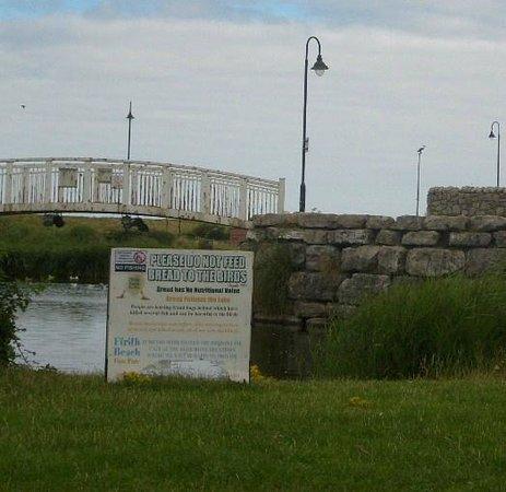 Ffrith Beach Festival Gardens: No feeding of ducks ..