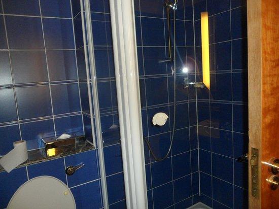 Novotel Cardiff Centre: Walk in shower in the bathroom