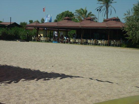 Club Hotel Felicia Village: la plage avec le bar