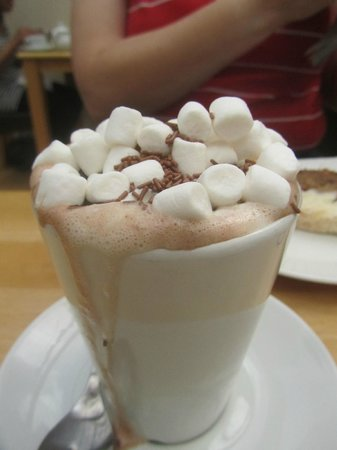 The Wild Flour : Superior hot chocolate for chocoholics everywhere!