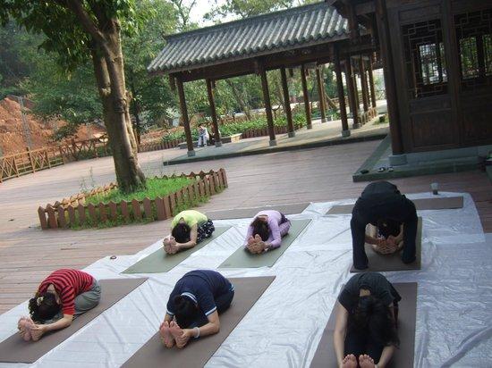 Yoga Monkey Hostel : Golden summit was seen when we did yoga