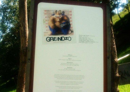 Parc Animalier d'Introd: Descrizione del Greundzo