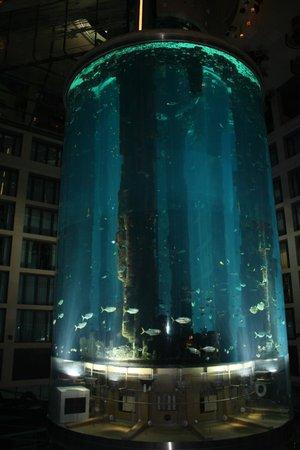 aqua dome billede af radisson blu hotel berlin berlin tripadvisor. Black Bedroom Furniture Sets. Home Design Ideas
