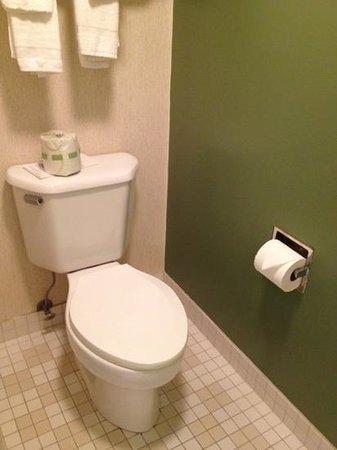 Sleep Inn: Teeny tiny bathroom with shower only.