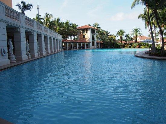 The Biltmore Hotel Miami Coral Gables : Swiming pool