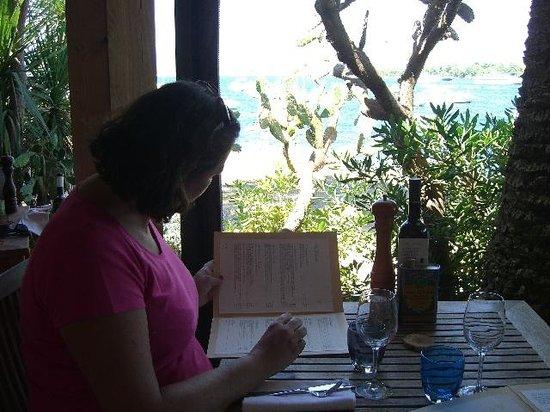 La Tonnelle: Vue de la table où nous étions