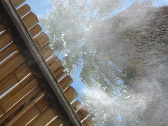 29 Palms Inn: Au bord de la piscine