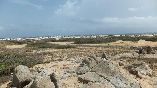 California Dunes: California Sand Dunes2