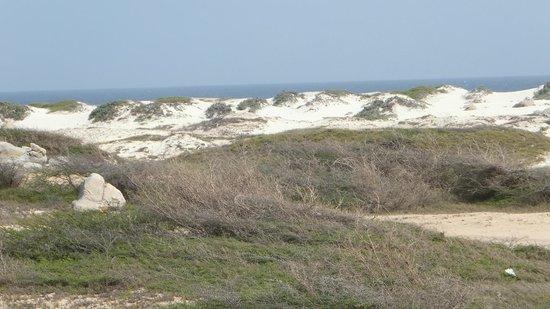 California Dunes: California Sand Dunes3