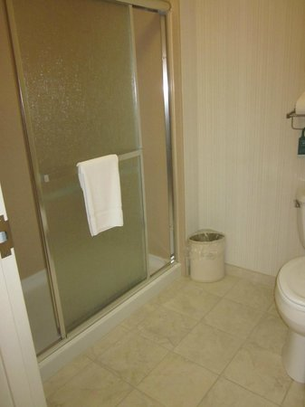 Homewood Suites Rochester - Victor: bathroom in hearing accessible room--no bathtub