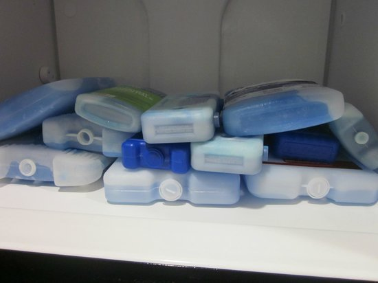 Homewood Suites Rochester - Victor: room in the freezer for all the blue ice I carry in my coolers