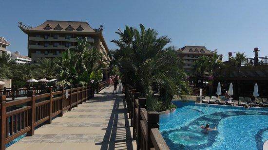 Royal Dragon Hotel : HOTEL