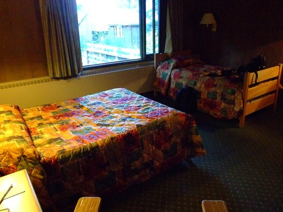 Glacier Bay Lodge - For 'rustic' read 'dingy with terrible beds'.