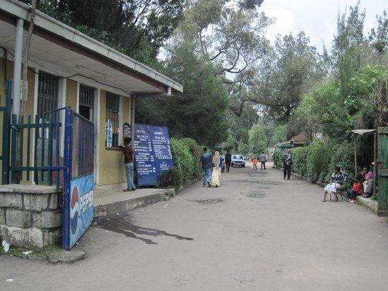 Lion Park: Entrance of the park