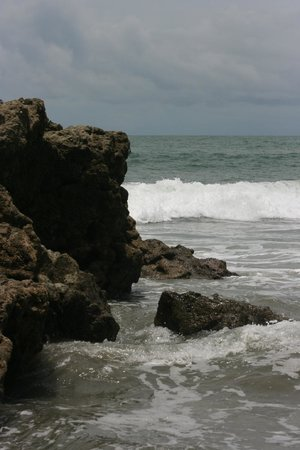 Arenas del Mar Beachfront and Rainforest Resort, Manuel Antonio, Costa Rica: Volcanic rock on the beach