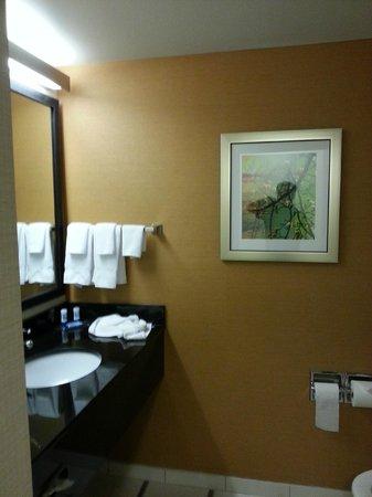 Fairfield Inn & Suites Smithfield Selma/I-95 : Beautiful bathroom