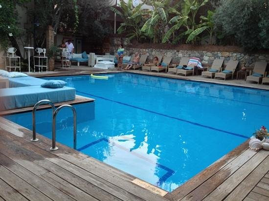 Oyster Restaurant: the pool
