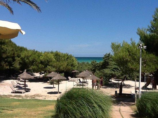 Grupotel Parc Natural & Spa: Vom Pool zum Strand