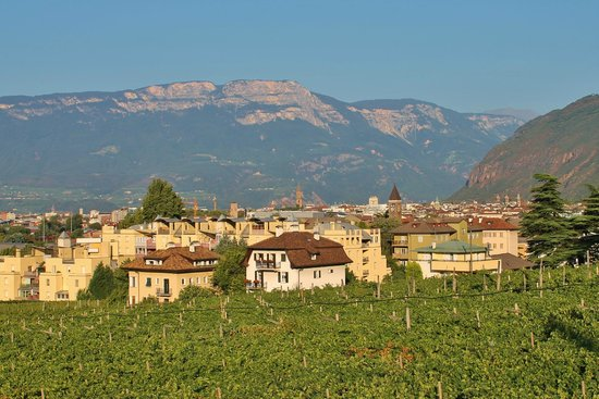 Magdalener Hof: View of downtown Bolzano and the vineyards from the hotel pool area.