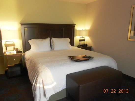 Hampton Inn & Suites Huntsville / Research Park Area: King Bed