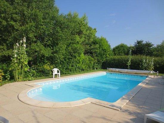 Chateau de la Motte : The swimming pool