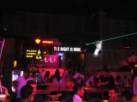 Club Ally: disco