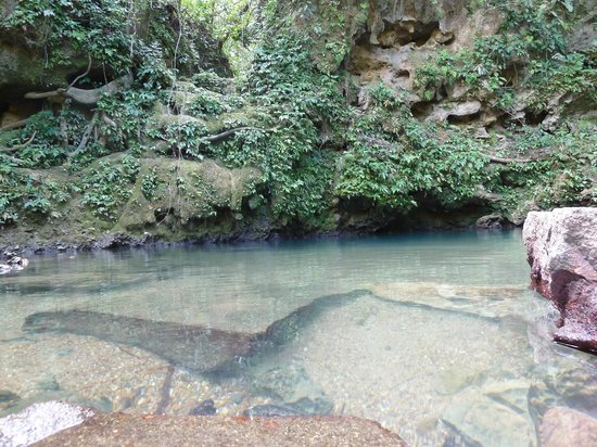 Blue Hole National Park: Clear Water