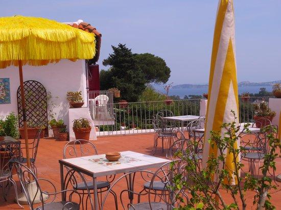 Don Pedro Hotel: Terrazza panoramica