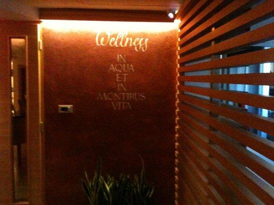 Sport&Wellness Hotel Cristallo: SPA