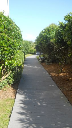 Meridian Plaza : The Walk to the beach!