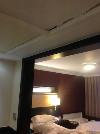 Hilton Manchester Airport: Roof leaking