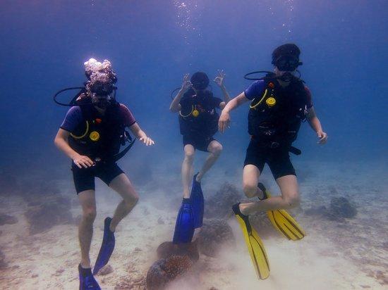 Heart & Soul Divers: dongwan