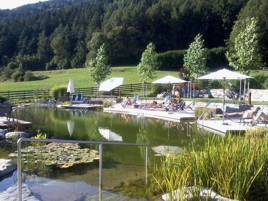 Hotel Leitgamhof: laghetto esterno