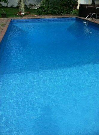 Hamptons House of Gardens Bed & Breakfast : Saltwater Pool = amazing