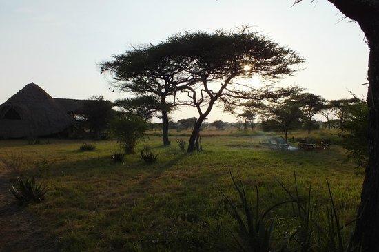 Mapito Tented Camp Serengeti: Aussicht vom Zelt