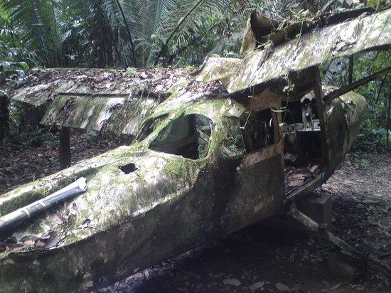 Cockscomb Basin Wildlife Preserve : Plane Wreck Trail