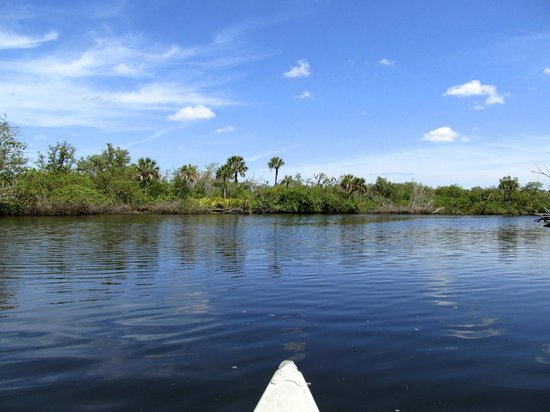 Koreshan State Historic Site: Canoeing on the Estero River