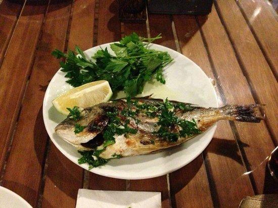 Grand Aygun Hotel: Fish yamiii :)