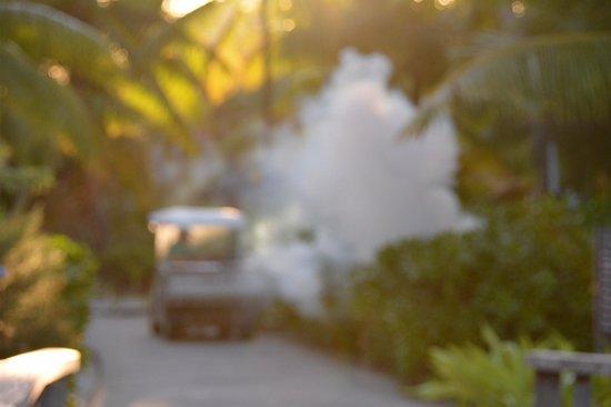 Four Seasons Resort Bora Bora: Nuking the mosquitoes