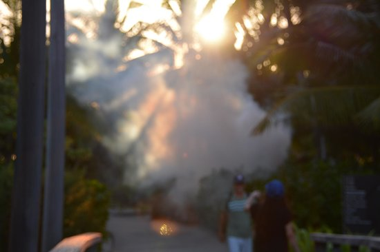 Four Seasons Resort Bora Bora: Nuking the mosquitoes and guests