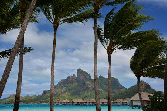 Four Seasons Resort Bora Bora: Pool/Beach area