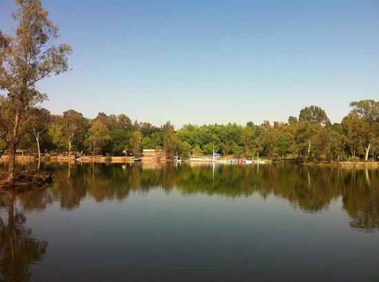 Vasona Lake County Park: Beautiful scenery