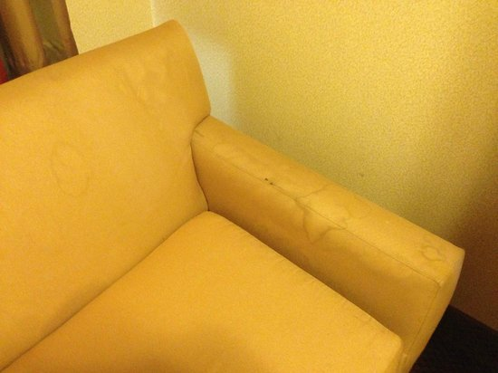 Quality Inn & Suites Anaheim at the Park: Stained sofa bed