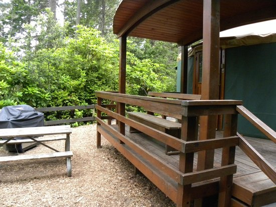 Firepit and picnic table picture of umpqua lighthouse for Oregon state parks yurts and cabins