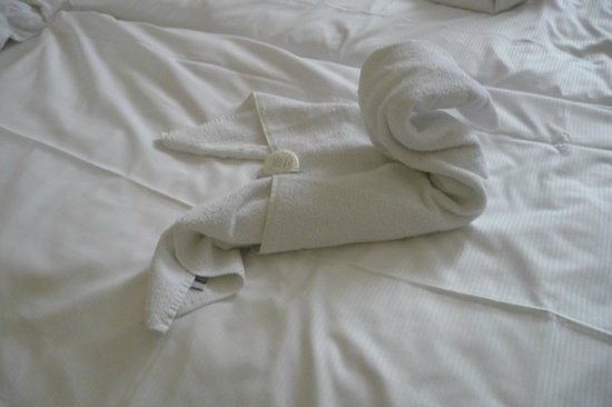 Hotel Europa: Towell made as swan in the room by staff