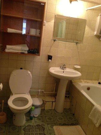Hotel Park Lion Bridge : Разбитая ванная комната