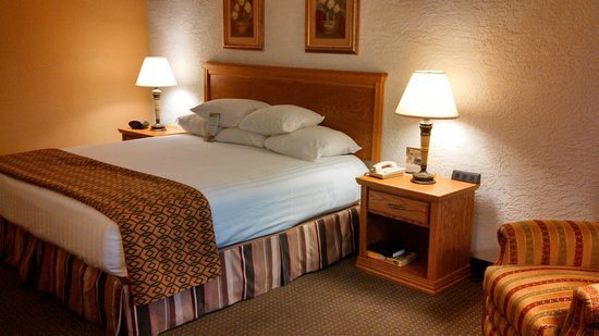 """Drury Inn & Suites Amarillo: Clean and no """"pet"""" smell"""